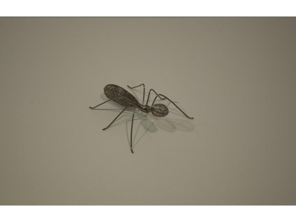 mravenec 1